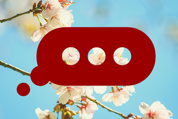 Chat bubble on a spring blossom background